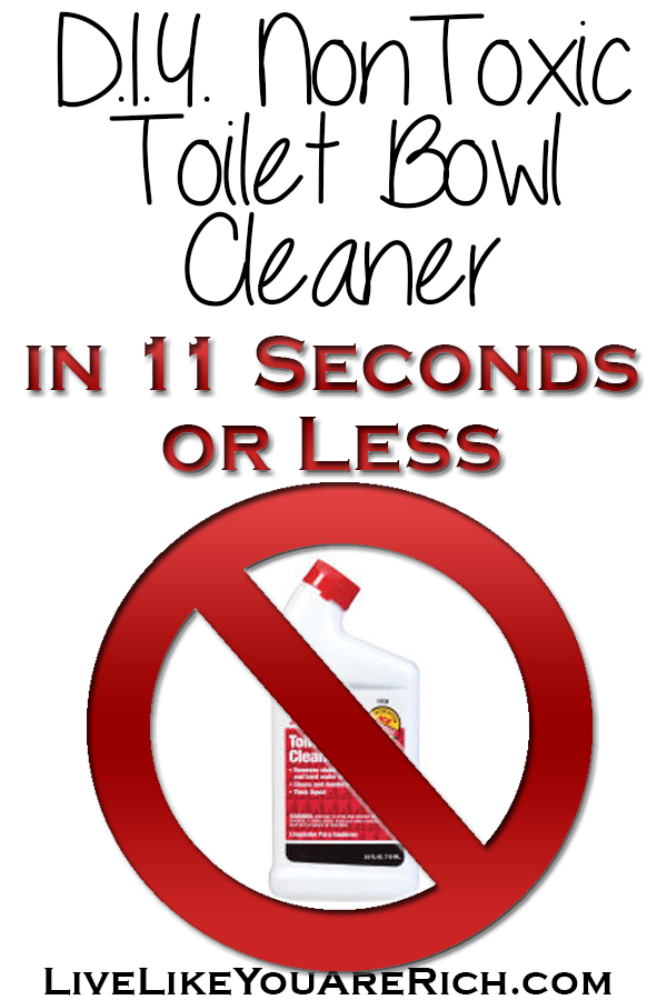DIY NonToxic Toilet Bowl Cleaner in 11 Seconds or Less
