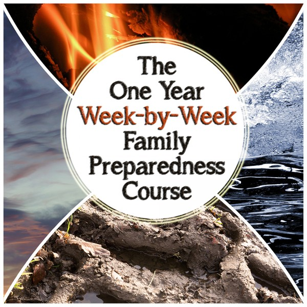 The One Year Week-by-Week Family Emergency Plan
