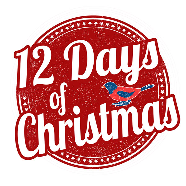 Gift Ideas for The Twelve Days of Christmas Days 7-9
