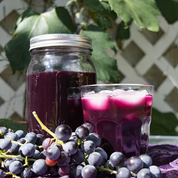 Homemade Concord Grape Juice